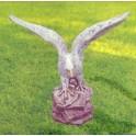Aquila Reale 60
